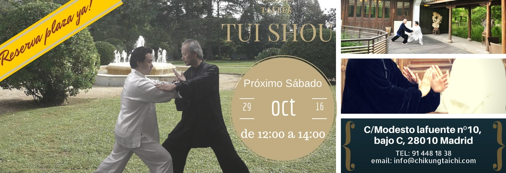 taller-Tui-shou-oct
