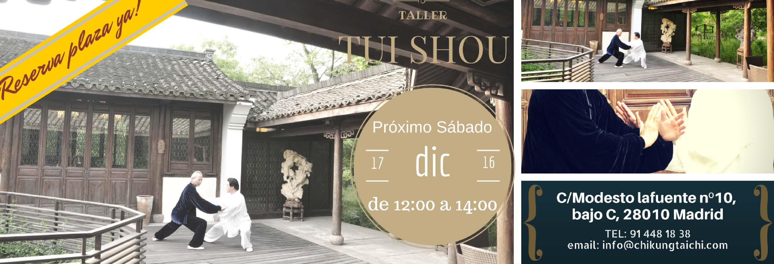 taller-Tui-shou-dic-8
