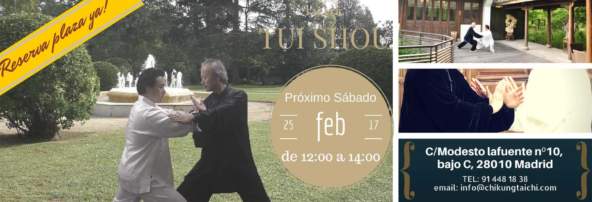 taller-Tui-shou-feb-1