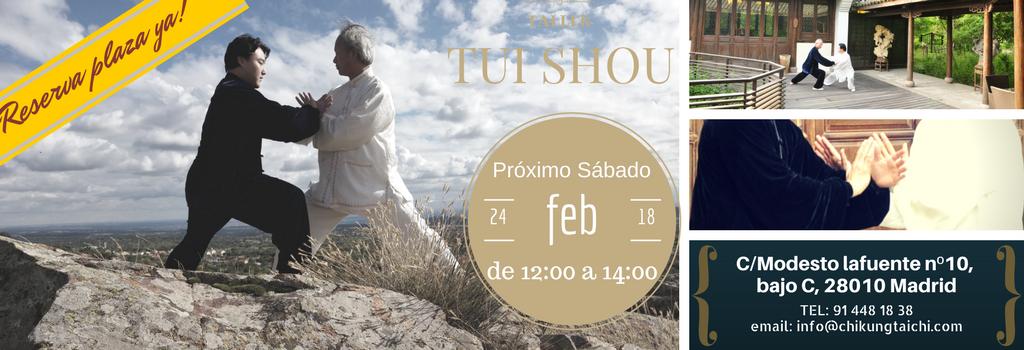 taller-Tui-shou-feb